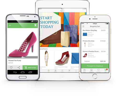 10 eCommerce Web App Development Tips Before Launching Online