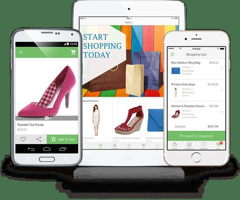 ecommerce web-app development